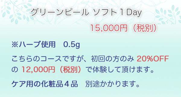 gp_menu1