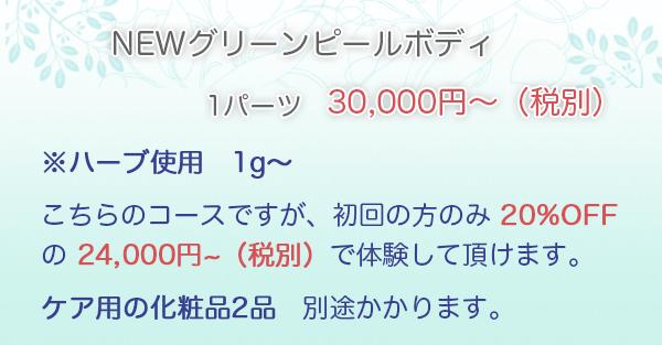 NEWグリーンピールボディ 1パーツ・・・30,000円~※ハーブ使用 1g〜こちらのコースですが、初回の方のみ 20%OFF の ¥25,920 で体験して頂けます。ケア用の化粧品2品 別途かかります。