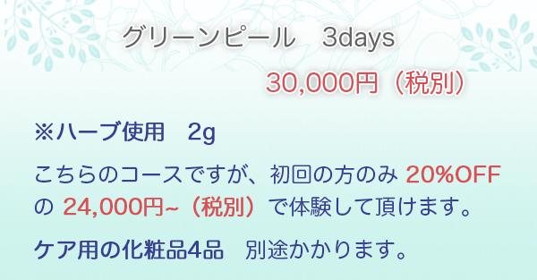 グリーンピール3days・・・30,000円 ※ハーブ使用 2g こちらのコースですが、初回の方のみ 20%OFF の ¥24,000 で体験して頂けます。ケア用の化粧品4品 別途かかります。